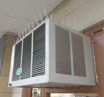 Bird Spikes on Window Air Conditioner